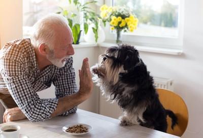 食卓に座る犬と手を合わせているシニア男性