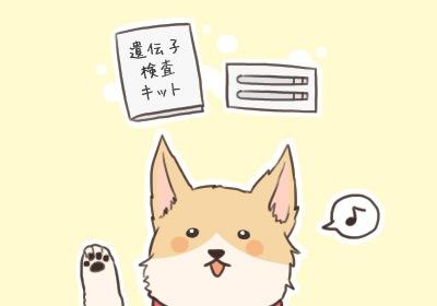 idenshi_kensa2