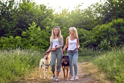犬とお散歩する2人の女性