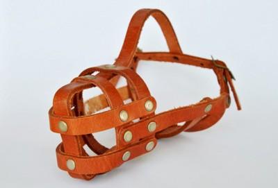 革製の犬の口輪