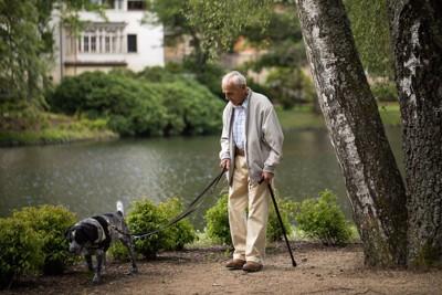 犬と散歩する年配の男性