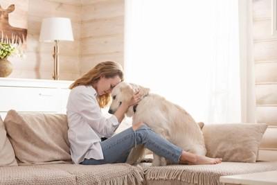 おでこを合わせるソファーの上の女性と犬