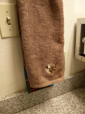 手拭きタオル