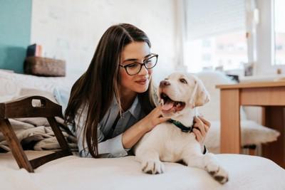 メガネを書けた女性と白い犬