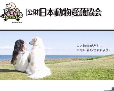 動物愛護協会HP