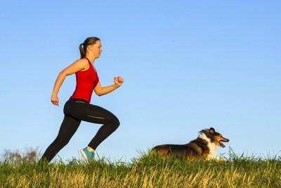 犬と一緒に走る女性