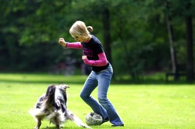 芝生でサッカーをして遊ぶ女性と犬