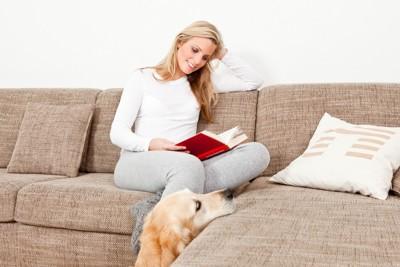 ソファでくつろぐ人と犬