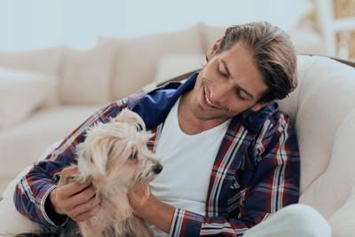 ソファーで男性に撫でられる犬