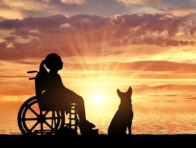車いすの子供と犬のシルエット