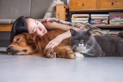 寝ている女性と犬と猫