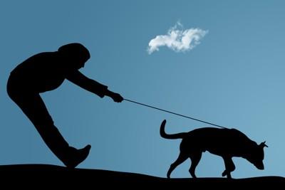 引っ張る犬と抑える飼い主のシルエット