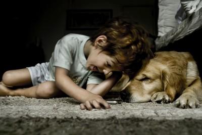 笑う少年と犬