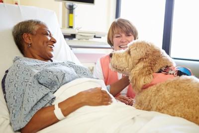入院患者を訪問するセラピードッグ