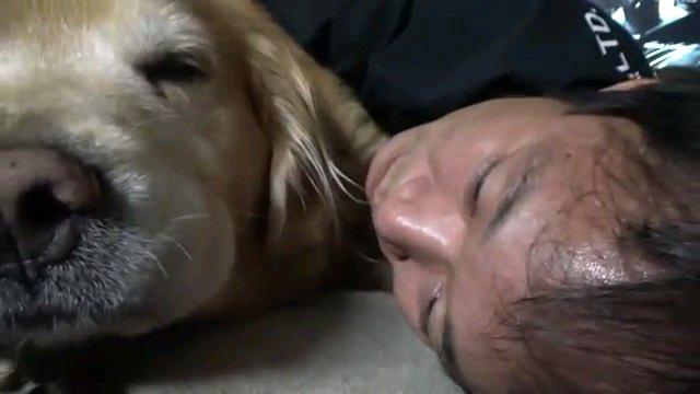 犬と一緒に寝転ぶ人