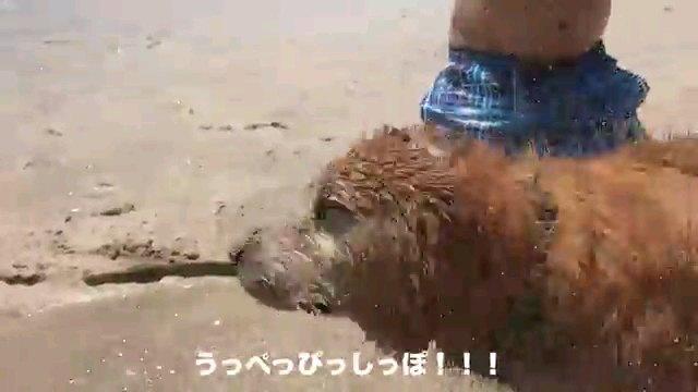 うっぺっ~字幕
