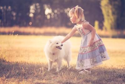 女の子に撫でられる犬