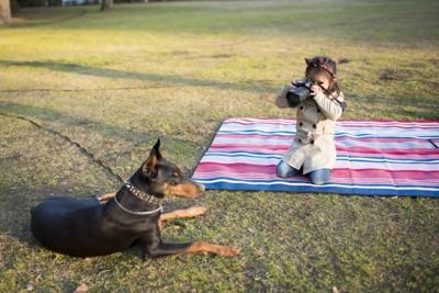 犬を撮る女の子