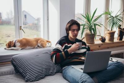 パソコンを見る男性と外を見て伏せる犬