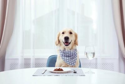 テーブルに行儀よく着席する犬
