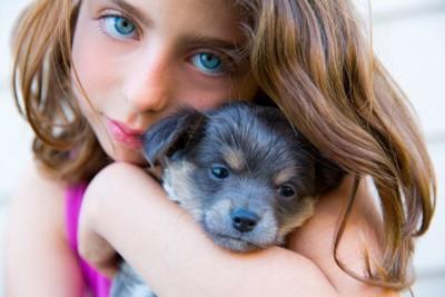 女の子とブルーのチワワ