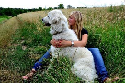 犬と女性の写真