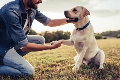 片手を上げて飼い主の手に乗せる犬