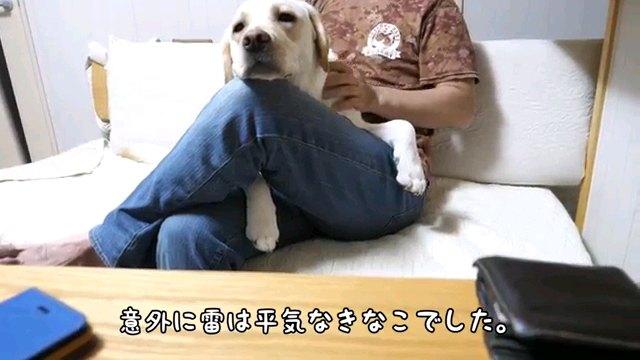 意外に~字幕