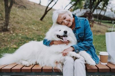シニア女性にくっつき嬉しそうな犬