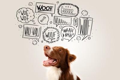 茶色のブチ犬とイラスト