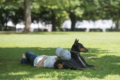 犬にもたれて昼寝をする女性