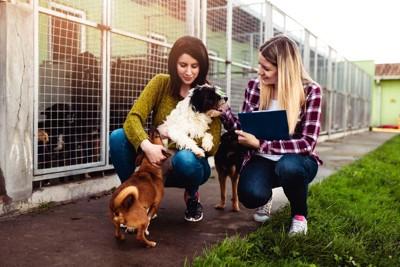 保護施設の犬と二人の女性
