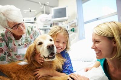 病院のベッドにいる女の子と犬