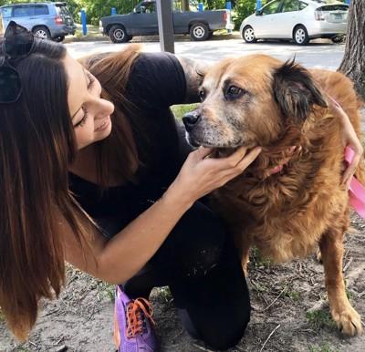 見つめ合う犬と女性