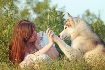 手と手を合わせる女性と犬