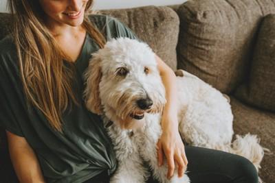 女の子に寄り添う犬
