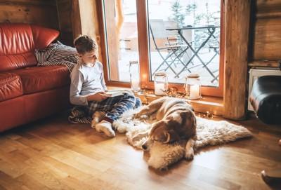 眠る犬の隣で本を読む男の子