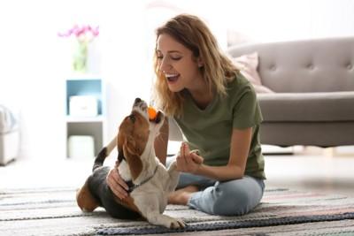 室内で愛犬と遊ぶ女性