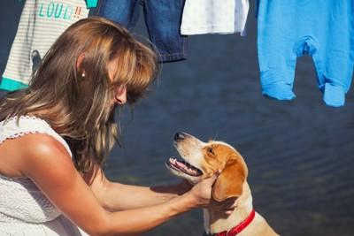 嬉しそうな犬と笑顔で褒める女性