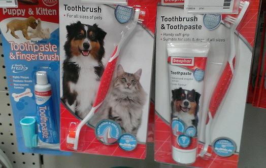 イギリスの犬用歯ブラシ