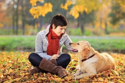 見つめる女性と犬