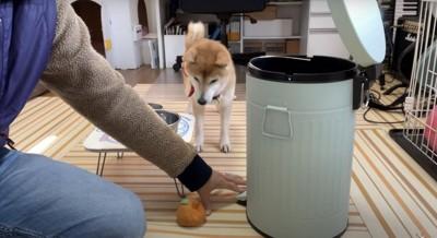 ゴミ箱は怖い!
