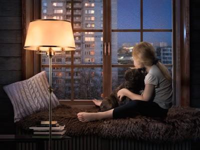 窓辺で外を見る子供に抱かれた黒い犬