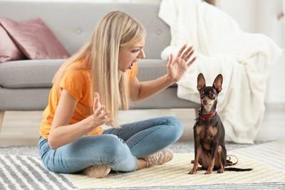 大袈裟に怒る女性と座っている犬
