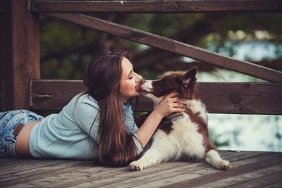 女性の口元を舐めている犬