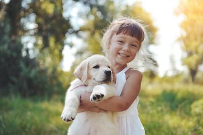 ゴールデンレトリバーの子犬を抱っこする笑顔の少女