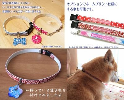 唐草模様のチョーカー首輪:柴犬着用