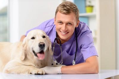 獣医と並ぶ犬