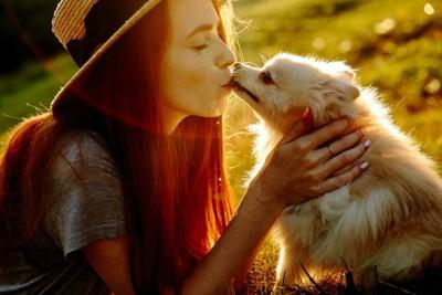 キスをする人と犬
