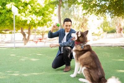 ボールを見せる男性と待つ犬